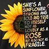 sunflower960